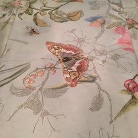 Butterfly Duvet and Shams